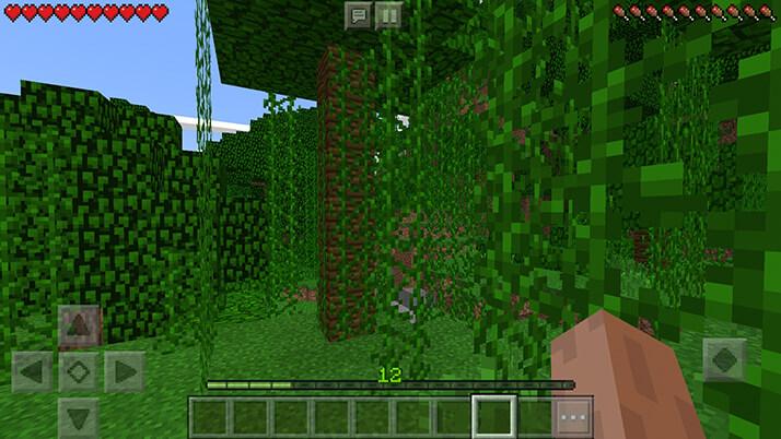目覚めるとそこはジャングル……ここがマイクラの世界か|#1 おじクラ – マインクラフトPE