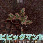 ゾンビピッグマンを倒して金と経験値GET!!|#13 おじクラ - マインクラフトPE